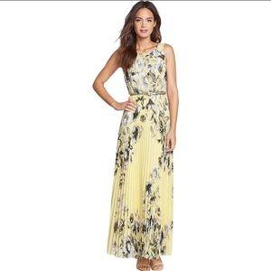 Eliza J Pleated Floral Maxi Dress